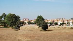 Terrenos colindantes a la calle Tiberio - L.M