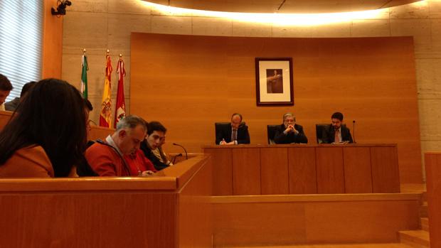 Pleno extraordinario del Ayuntamiento nazareno / L.M.