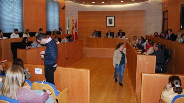 Pleno del Ayuntamiento de Dos Hermanas - L.M.