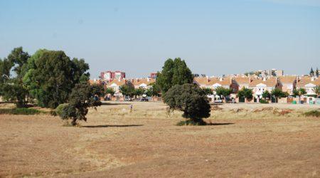 Zona de los futuros huertos urbanos - L.M.