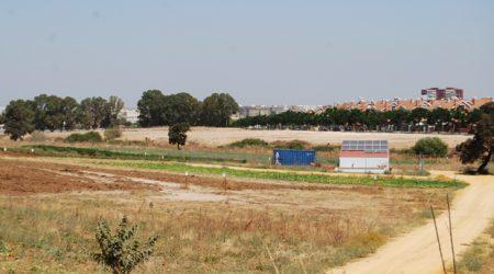 FOTO Zona donde irán los huertos urbanos - L. M.