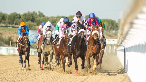 Carreras de caballos en el hipódromo de Dos Hermanas - ABC
